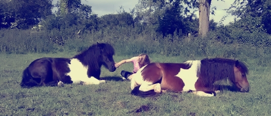 Equine Therapy, Paintedhorse, EFL, EAL, LEAP