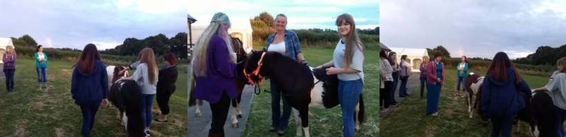 Ilminster Positive Living Group, Paintedhorse, Equine Therapy, ReWilding, LEAP