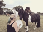 Equine therapy somerset Livvy Adams Paintedhorse George McBurney claire ryall the healing herd