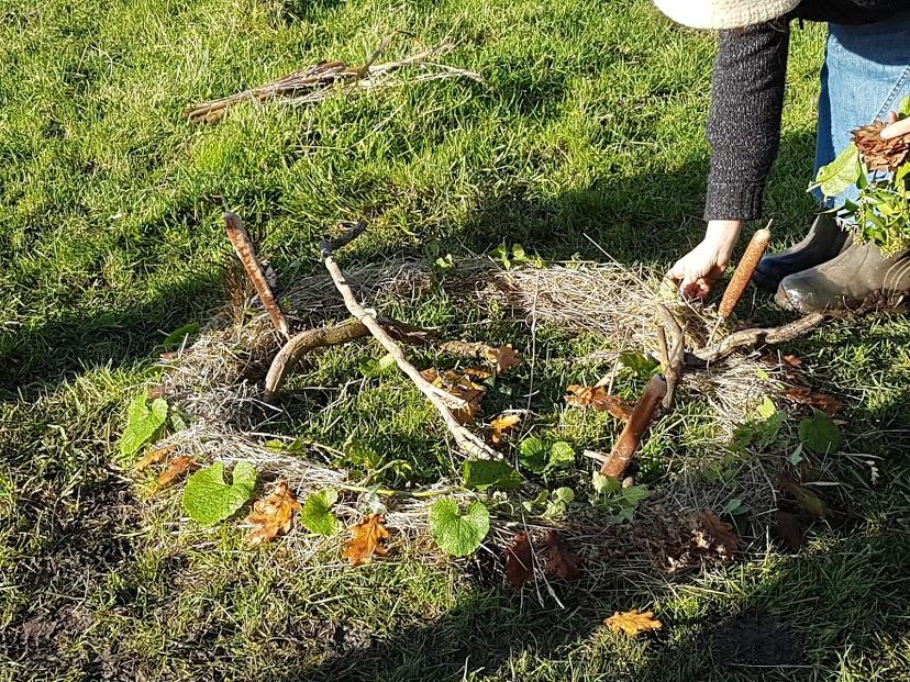 Autumn ReWilding
