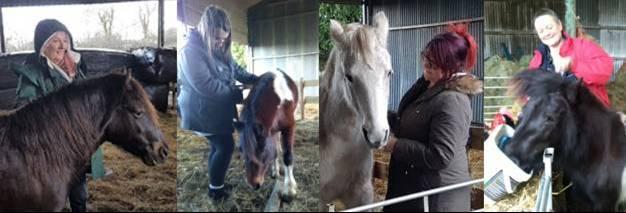 Paintedhorse, equine therapy, rewilding, EFL, EFP, CPCAB
