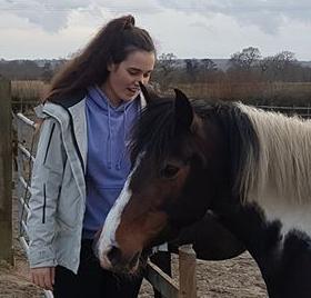 Paintedhorse, Duke of Edinburgh Gold, Voluntary work, Equine Therapy, Somerset