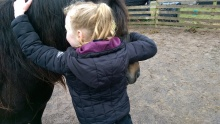 Equine Therapy, Painted horse, Children, Somerset
